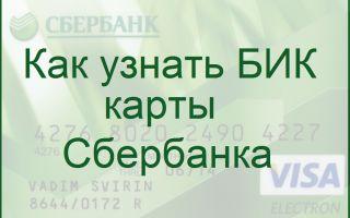 БИК Сбербанка по номеру карты или отделения: как узнать
