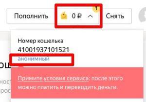 Анонимный статус в Яндекс.Кошельке