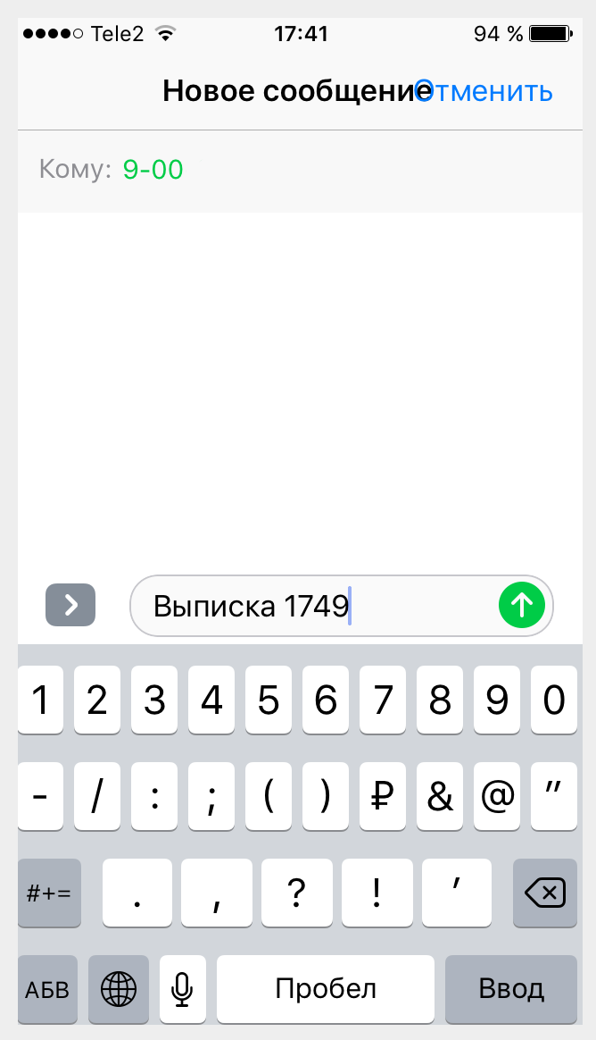 Выписка по СМС