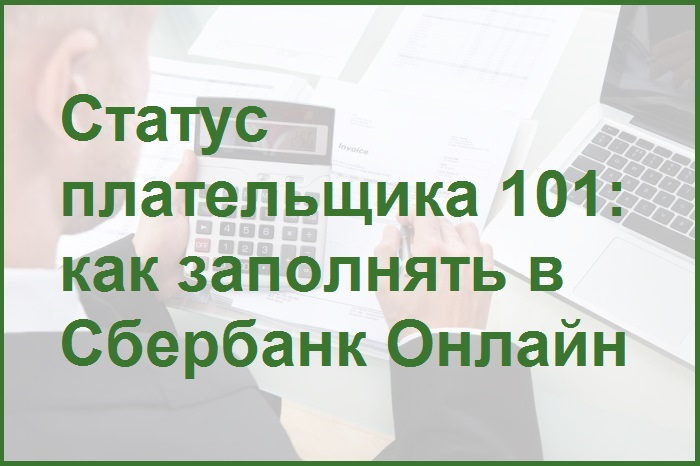 слайд презентации на тему статуса плательщика в Сбербанк Онлайн